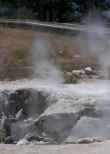 steaming mud pots