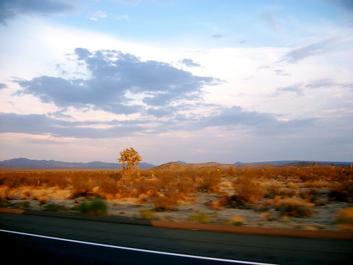 View of the Mojave from the car.