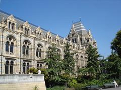 Natural History Museum (5)