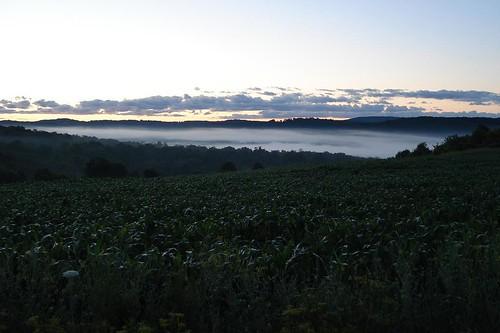 sunrise over the banding station
