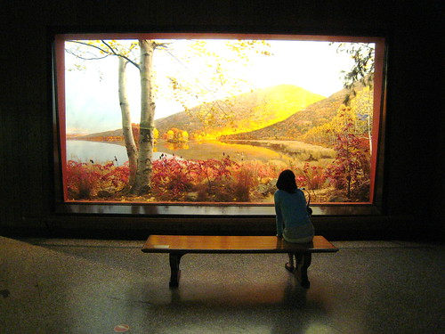 At AMNH