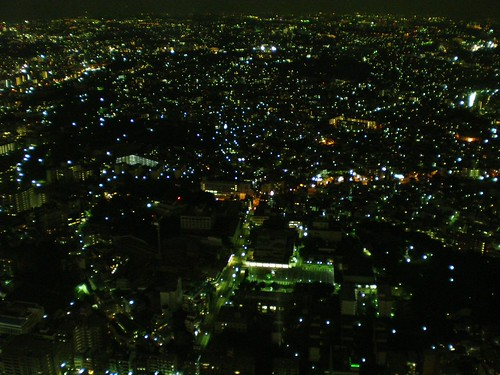 View from Landmark Tower