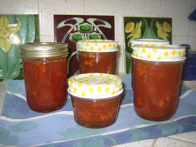 Apricot-Orange Conserve 2007