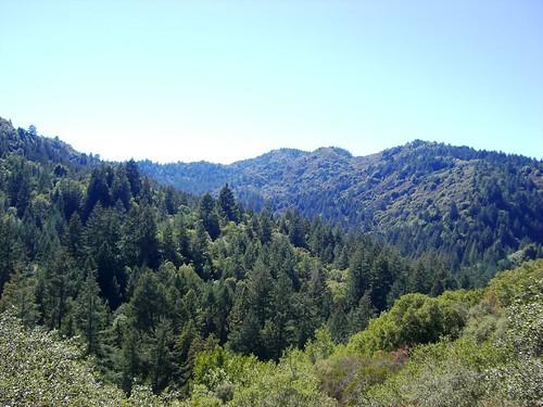 Bothe-Napa State Park, Coyote Peak Trail