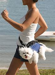 dog fanny pack