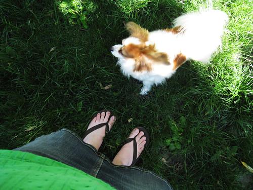 Backyard feet.