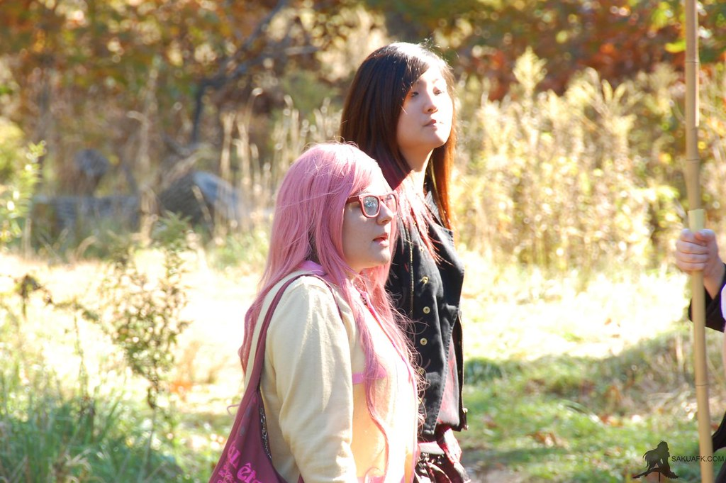 cosplay picnic high park 28