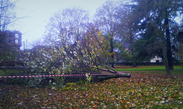 Severe winds hit Cardiff