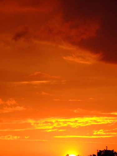 Gilded Sunset Skies