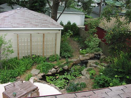 Pond - August 2006