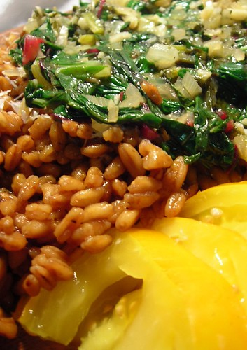 Swiss Chard and Sorrel over Spelt (with a yellow tomato on the side)
