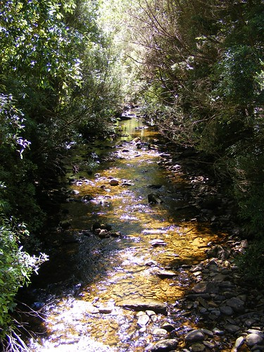 2008_0106australia20354