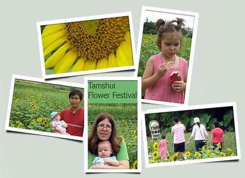 SunflowerFestival