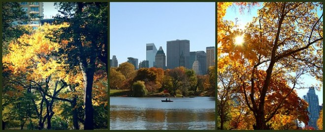 Colors of Central Park