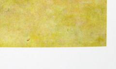 Francesco Orlando, La doppia seduzione, Einaudi 2010; alla cop.: ill. col.: Spiaggia, di Moses Levy, 1921, coll. priv., © Moses Levy, by SIAE 2009, (part.) 10