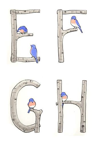 Alphabirdybet E-H.