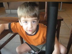 Little Dude hiding under the table.