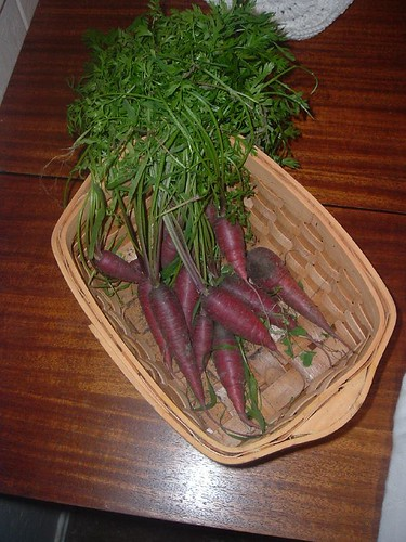 Gratuitous Carrots