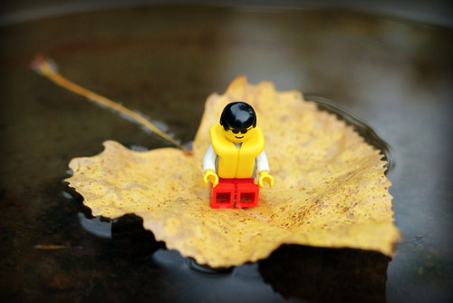 Life (leaf) boat
