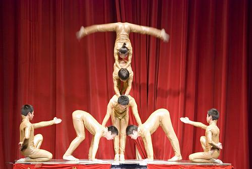 Cirque Shanghai Goldfinger