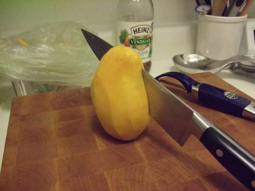 Mango Salsa Recipe - 03