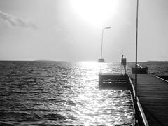 black and white sunset