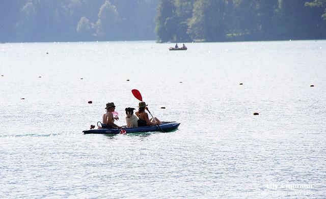 滑獨木舟也是湖上的休閒活動之一,這一對情侶連愛狗都一起載上去囉!