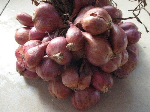 $1 worth of shallots
