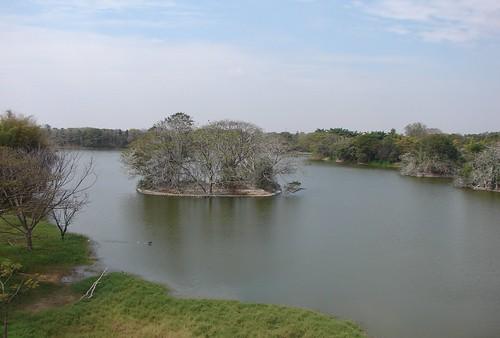 Karanji Kere, Mysore