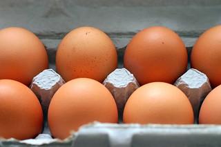 eight eggs