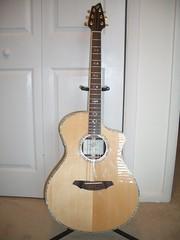 Breedlove Acoustic Guitar AC25/SR Plus