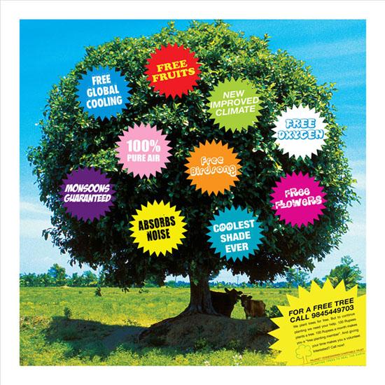 Plan a tree