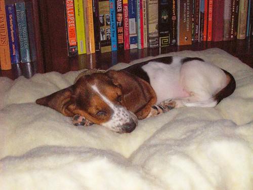 Sleepy Becky