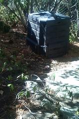 My dear compost bin