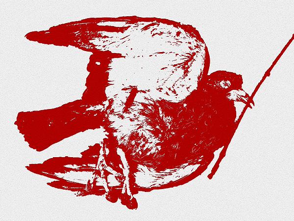 Pearl River pigeon