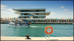 Port Americas's Cup
