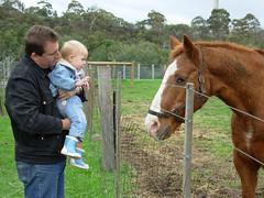 Collingwood Children's Farm 1