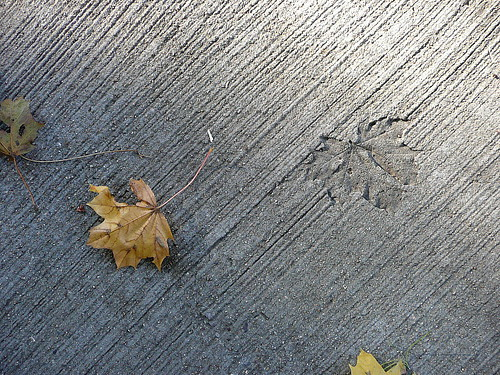 Leaf and imprint