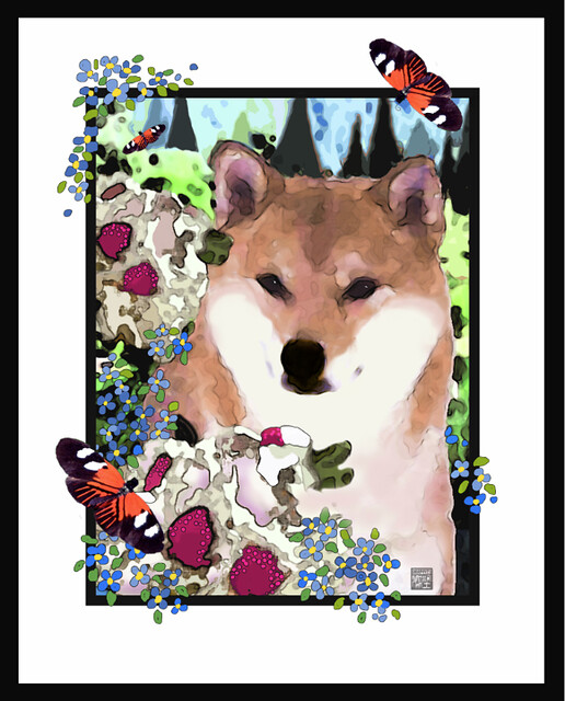 SHIBA INU NATIONAL SPECIALTY TROPHY (BUTTERFLY VERSION)