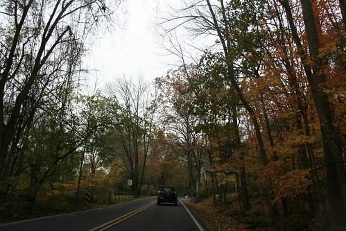 pretty fall