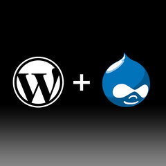 Wordpress MU & Drupal M/K søges