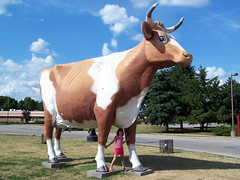 Plastic cow at the Janesville Oasis