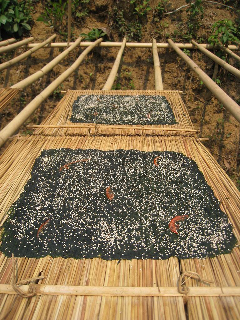 Seaweed, Nong Kiaow