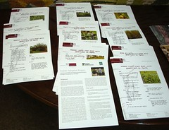 Fodder leaflets for Ethiopia