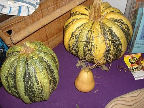 Pumpkins & Yam