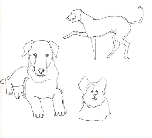 Dog sketches.