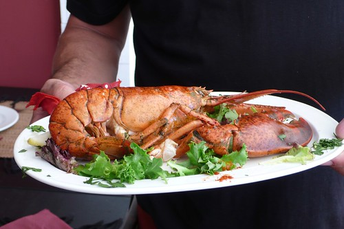 Carston's lobster