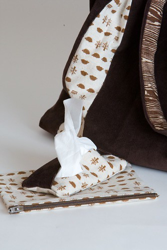 Tissue Holder and Pouch