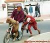motociclismo2