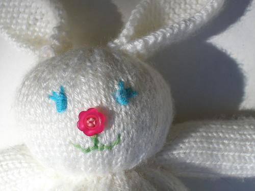 bunny closeup